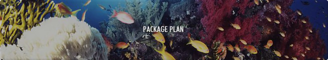 Package Plan