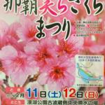 nahatyurasakuramaturi_pic