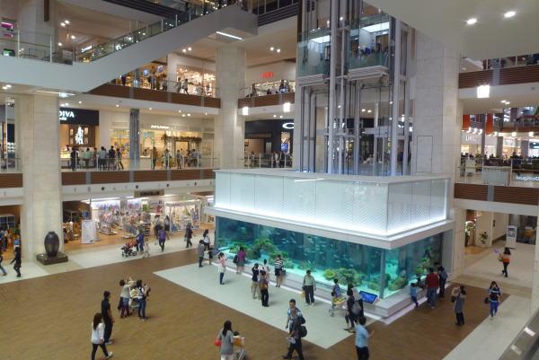 「沖縄イオンモールライカム 水槽 フリー画像」の画像検索結果